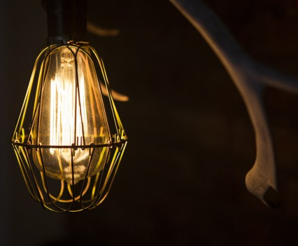 Edison light bulb with cage.